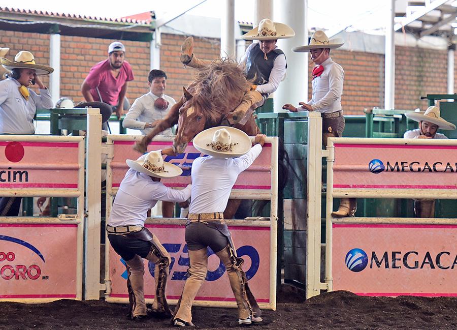 """Con mucha valentía Rodrigo Rodríguez en la jineteada de yegua que ejecutó por los Tres Regalos """"Ixtul"""""""