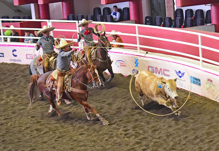 Miguel Ángel Espinoza rematando el lazo cabecero de 27 unidades para La Bóveda de Hidalgo