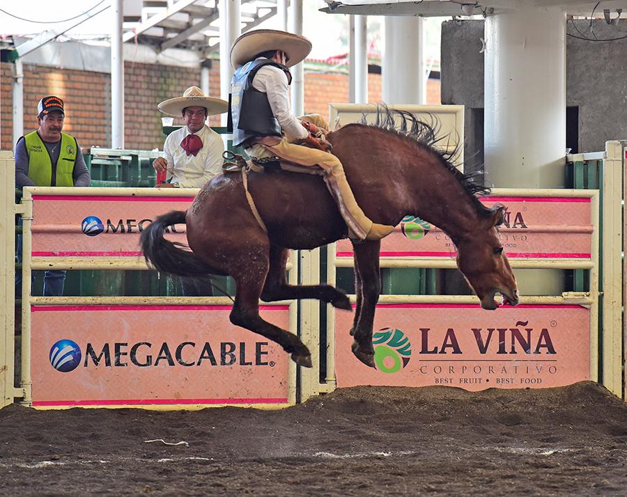 Carlos Martínez jineteó de muy buena forma esta yegua para Ganadera Santa Isabel