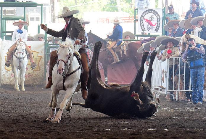 Rancho La Biznaga recuperó terreno en el coleadero, donde acumularon 99 puntos