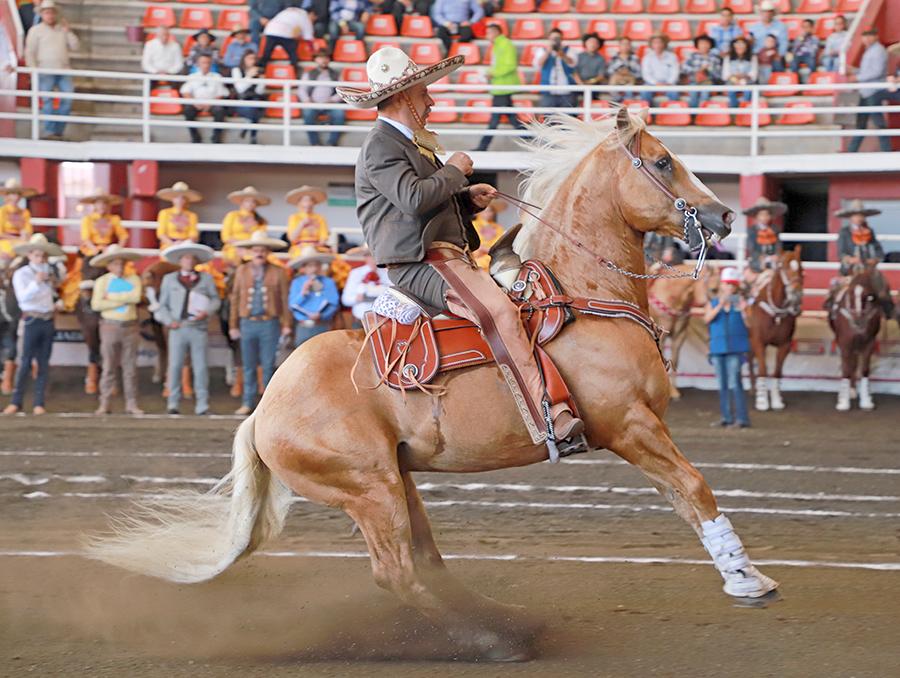 Leonardo Dávila, presidente de la Federación, logró cala de caballo de 36 puntos para Valle de Saltillo