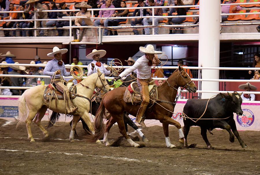 Dorados de California lograron el triunfo en la competencia nocturna con 271 unidades