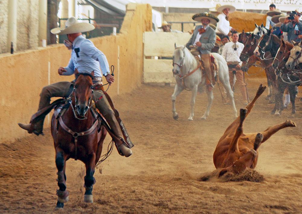 Este jueves 13 de febrero arrancarán las emociones del Aniversario de la Federación en el Campo Charro Jalisco