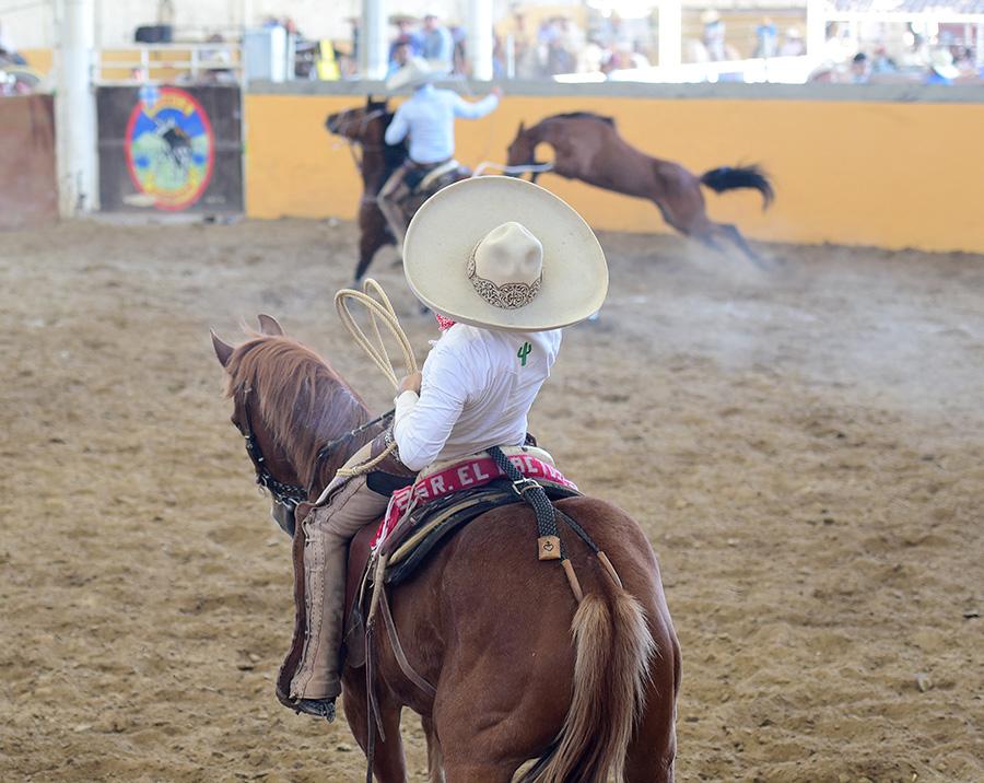 """Carlos Aceves Rivera derribó dos manganas a caballo para Rancho El Diamante """"A"""""""