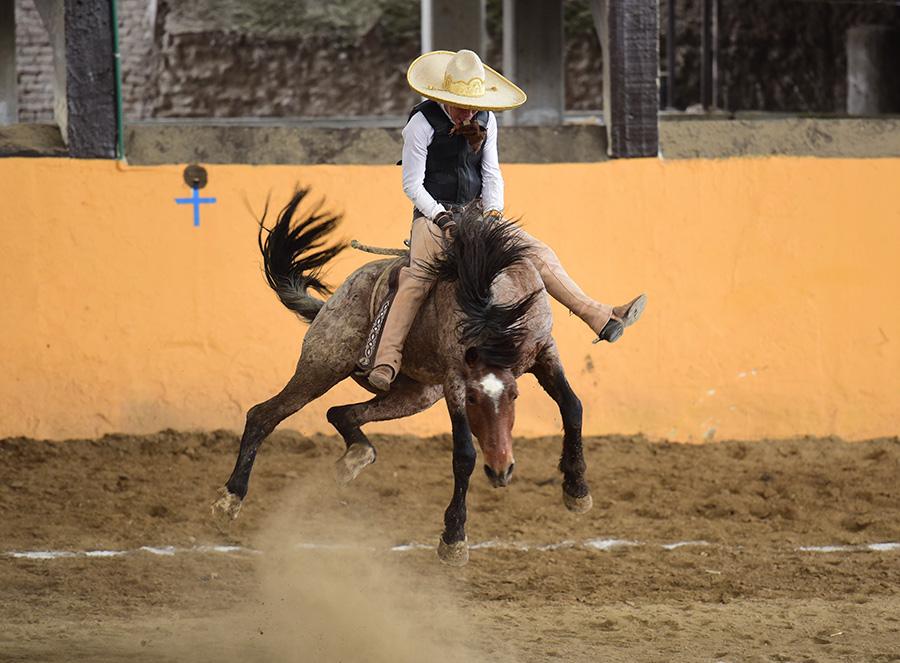 Francisco Torres se jugó el físico ante esta poderosa yegua, logrando 28 unidades por los Charros de Jalisco