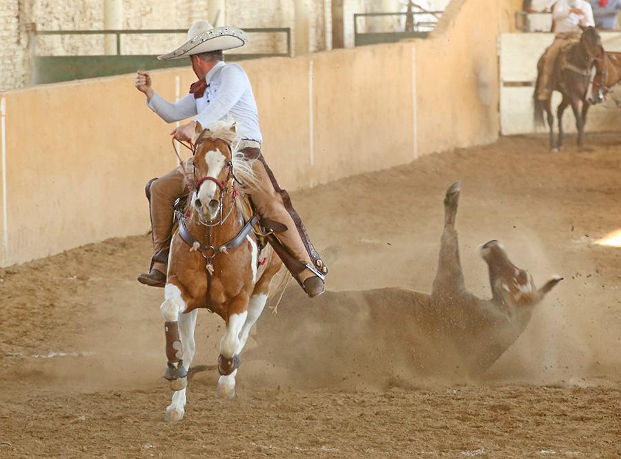 Los Charros de Jalisco destacaron con 104 puntos totales en el coleadero