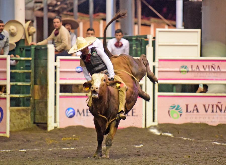 Efectiva la monta de toro de Carlos Flores para El Trébol 3G de Hidalgo
