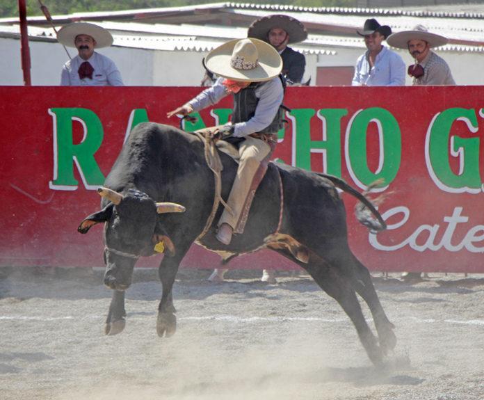 Torazos impresionantes dieron gran espectáculo en la charreada por el Trofeo Guadalupano