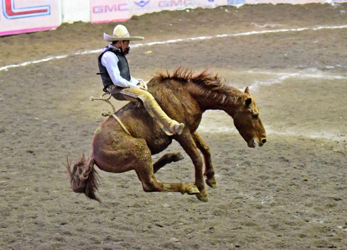 Fantástica la jineteada de yegua que pegó José Luis Samperio para Rancho La Biznaga