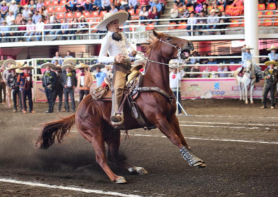Magnífica la cala de caballo de 40 unidades por parte de Martín Perea Mijares