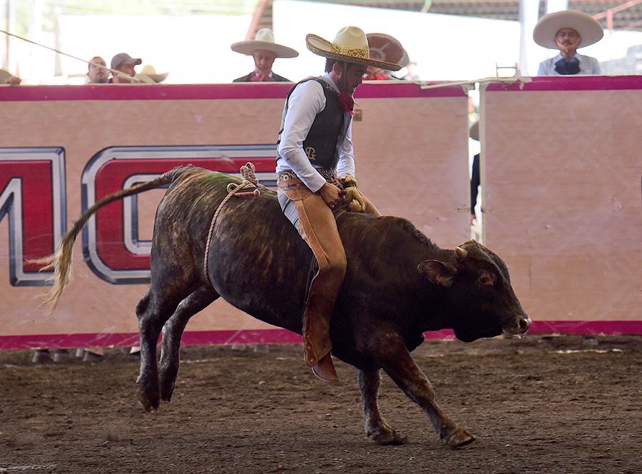 Diego Ibarra completando su jineteo de toro en la final de los charros completos