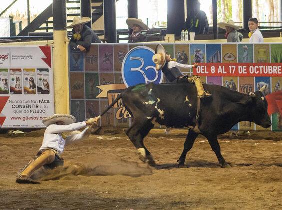Emocionante la jineteada de toro de Emiliano de Jesús Núñez Martínez, de los Rancheros de Tijuana, apoyado por un charro adulto conforme al reglamento de la categoría Dientes de Leche