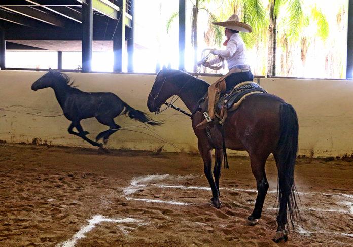 José Antonio Salcedo Aceves acertando el pial en el lienzo para Rancho El Pitayo