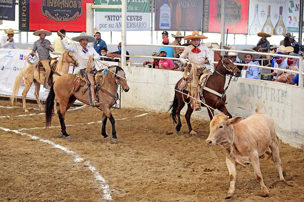 Víctor Urbiola Zaragoza logró este lazo cabecero de 18 unidades para Hacienda Panales de Querétaro