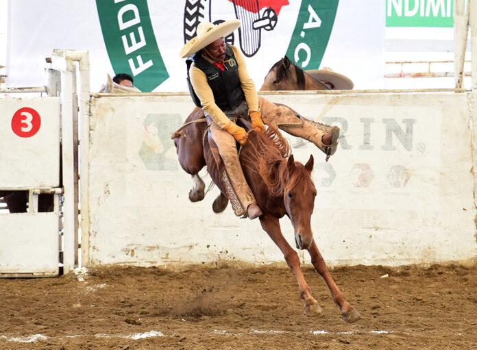 Excelente jineteada de yegua ejecutó Sergio Arturo Rincón Torres de Las Tres B