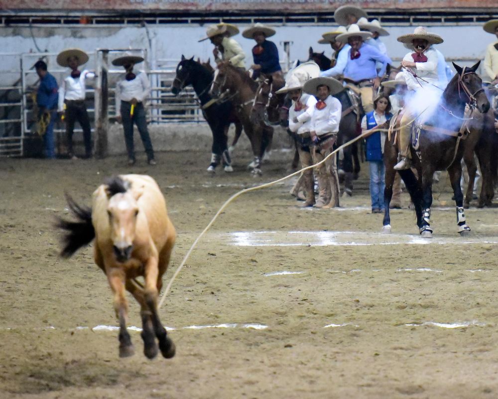Buen pial de 20 puntos de Jaime Armando Mariscal Morales, por Rancho El Armadillo de Nayarit