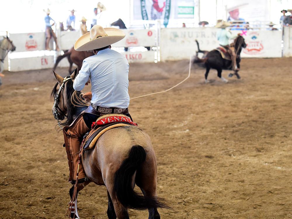 Juventino Parra en la única mangana a caballo que cuajó para Rancho Las Cuatas