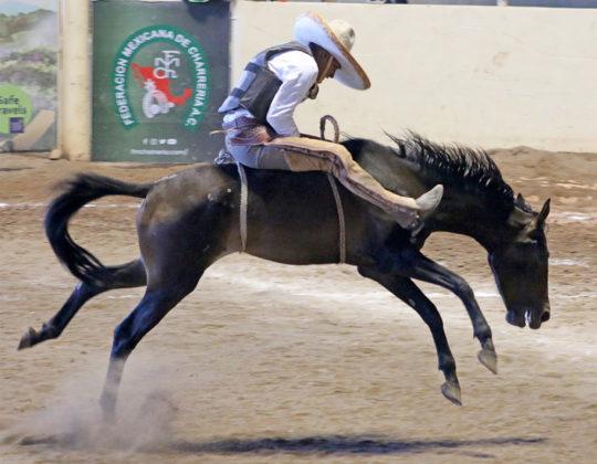 Fuertes reparos de la yegua aguantó José Zaid Reyes Camarena, de Cienegal de Peñuelas