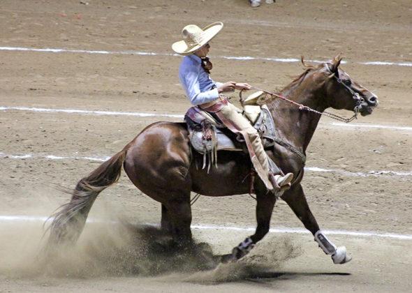 José Fernando Calderón Cuevas calando su cabalgadura para Puente de Camotlán