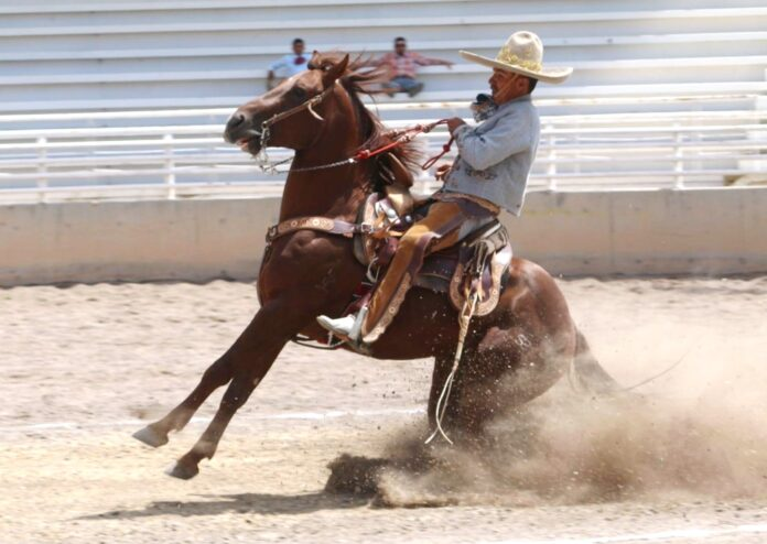 Con esta punta raya presentada por Abel D'Loera, del Rancho La Esperanza, se puso en marcha el Campeonato Estatal Charro de Aguascalientes
