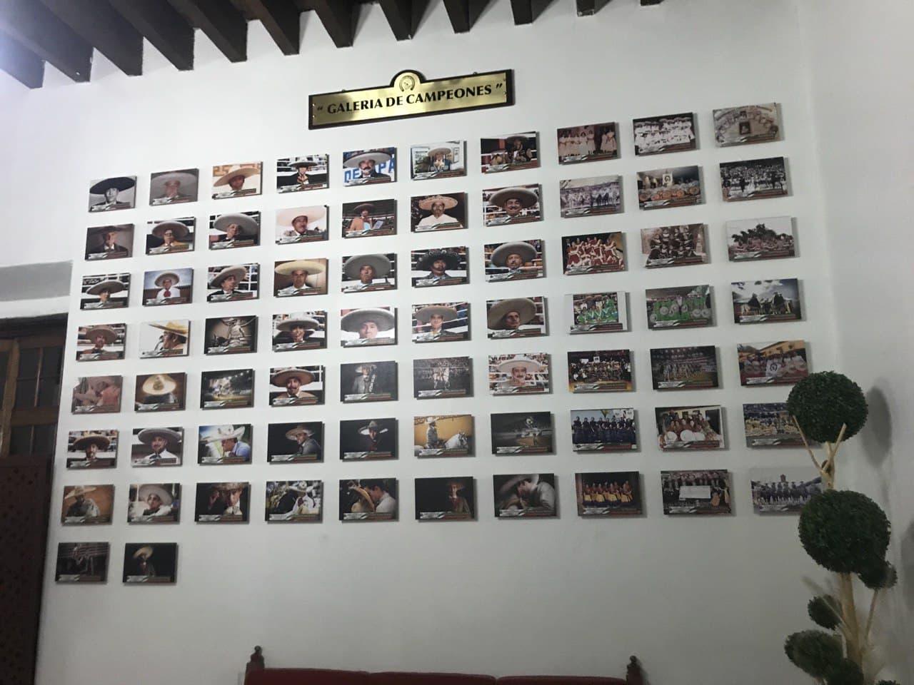 La Galería de Campeones muestra aquellos monarcas que conquistaron el título nacional de su modalidad de forma cronológica