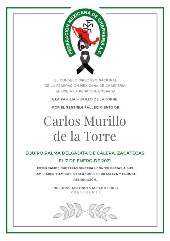 Carlos Murillo de la Torre